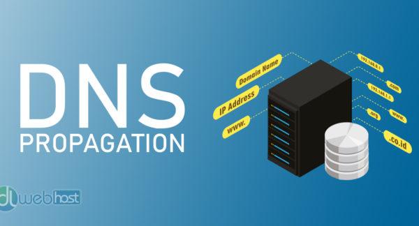 DNS Propogation